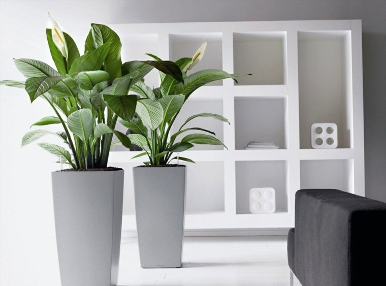 jardineras modernas-decorar-interior