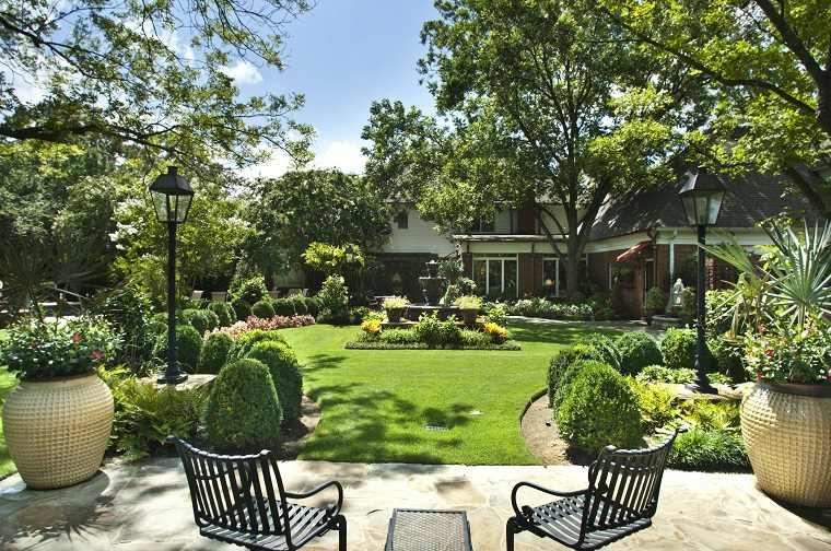 plantas para jardín-opciones-originales-cesped