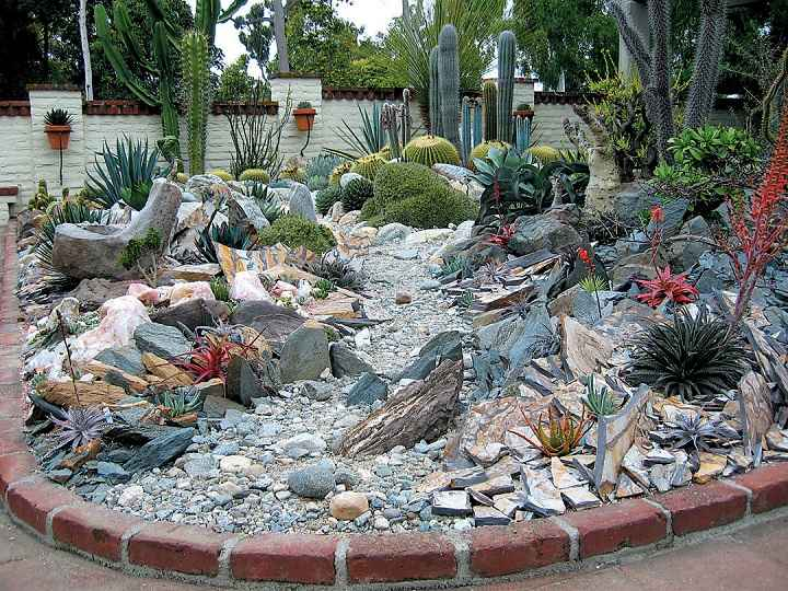 sencillo-xeriscape-plantas-desierto