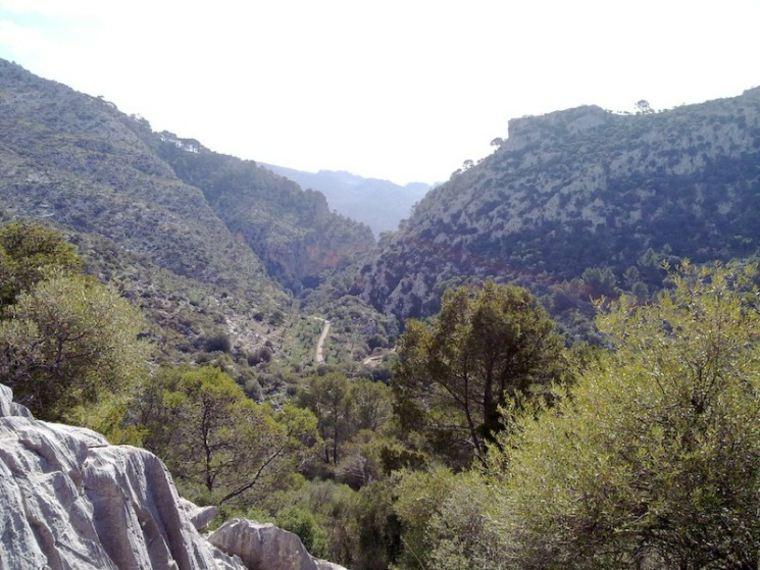 montes en Alaro, Mallorca