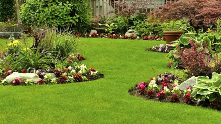 beautiful grass-care-maintenance