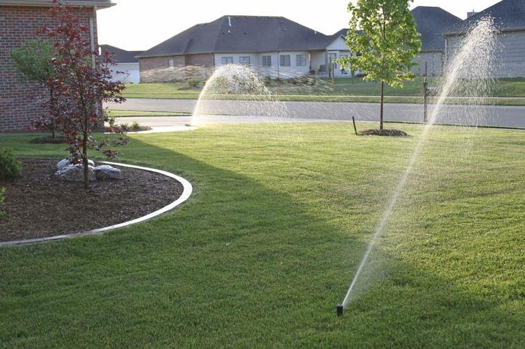lawn tips-maintenance-watering