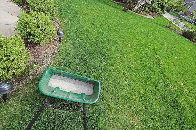 lawn fertilization-grass-maintenance