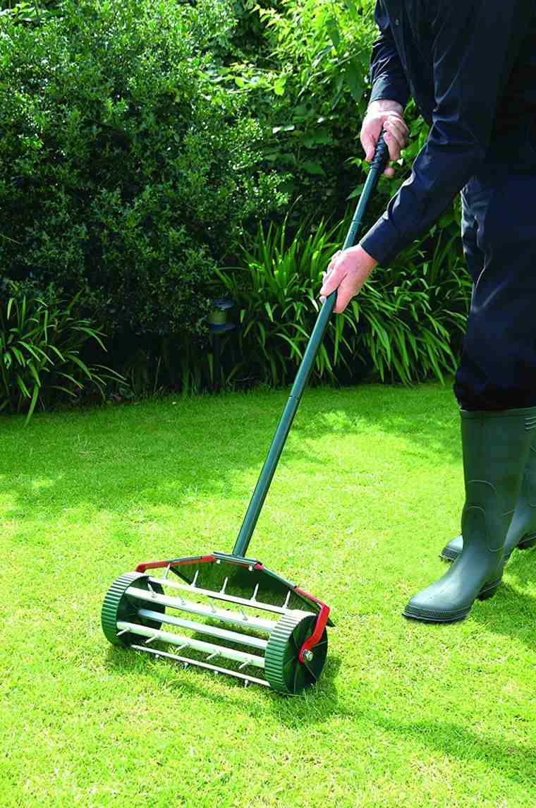 lawn sow-aerate-maintain
