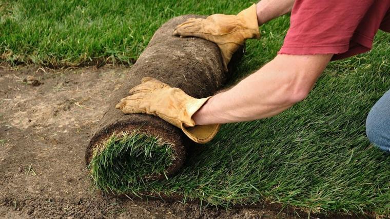 grass planting-installation-sods