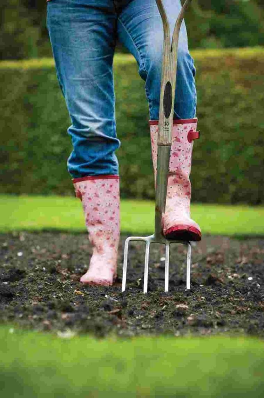 grass planting-preparation-land