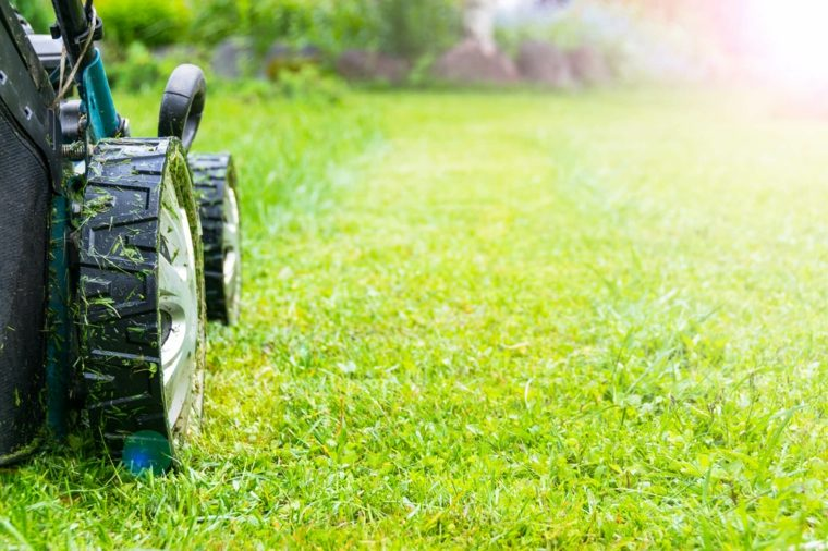 lawn mower-maintenance-garden-care