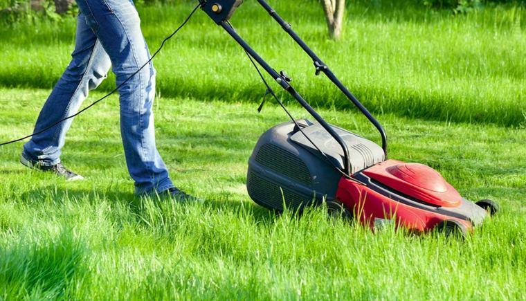 cortadora de cesped-mantenimiento-jardin