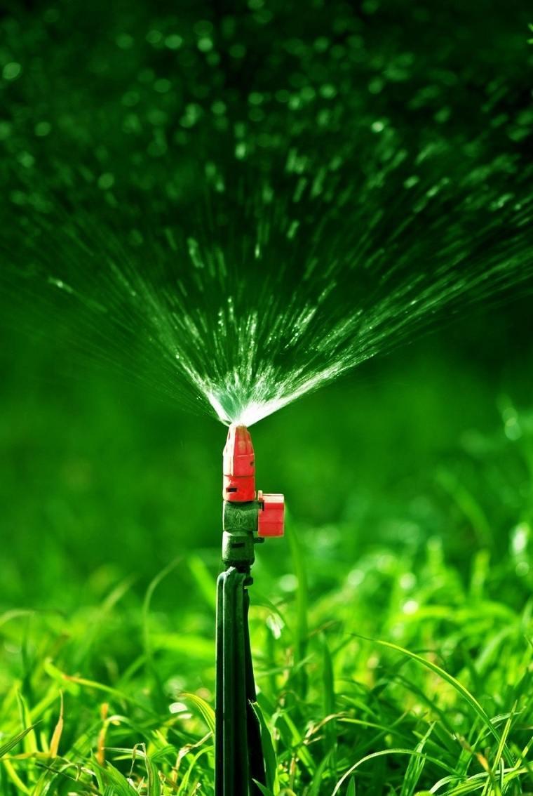 cultivar-cesped-agua-opciones