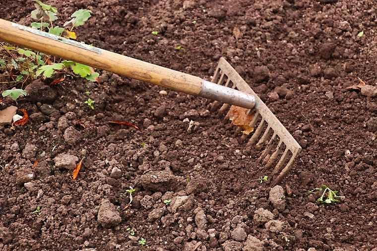 cultivo-cesped-prepara-suelo-consejos-utiles