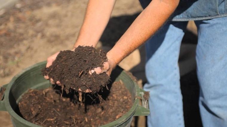 cultivo-cesped-prepara-suelo-semillas