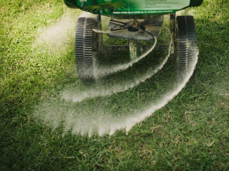 cultivation of grass-bugs-fertilize it
