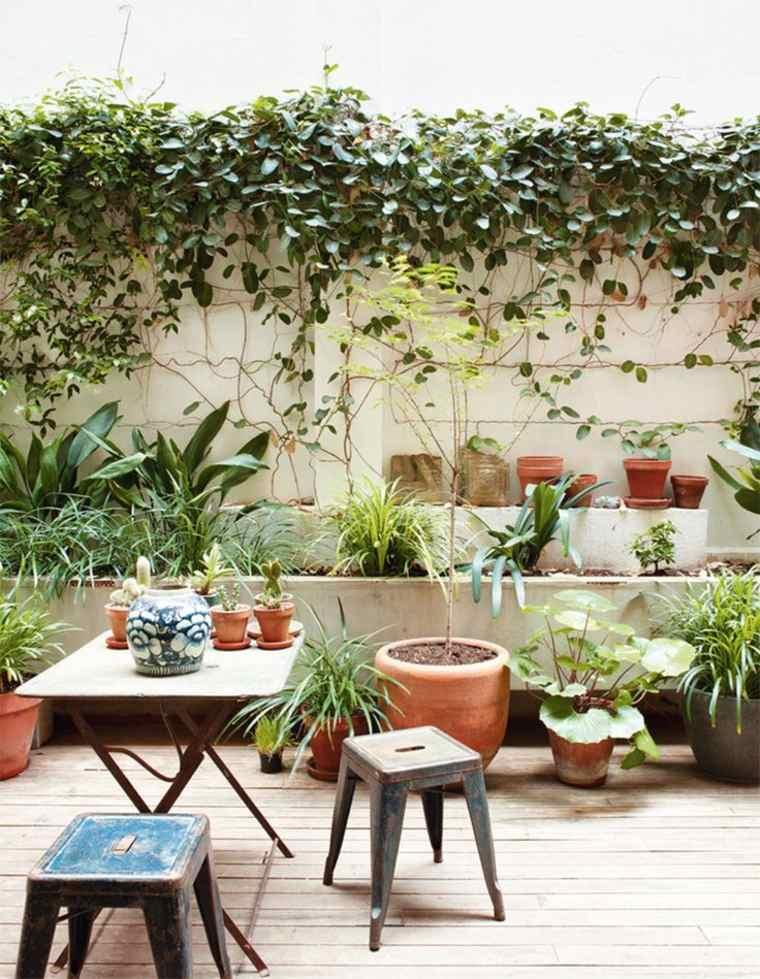 terrazas y jardines modernos