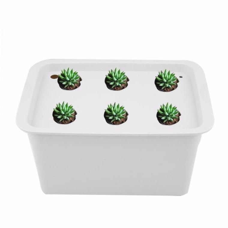 diferentes formas de cultivo-plantas-hidroponicas