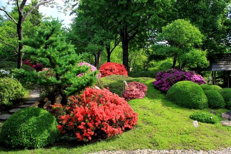 especies de flores-mantenimiento-riego