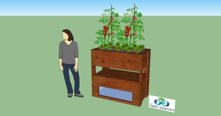formas de cultivo-acuaponicas-alternativas