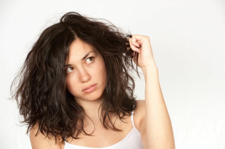 ingredientes del shampoo-pelo-seco