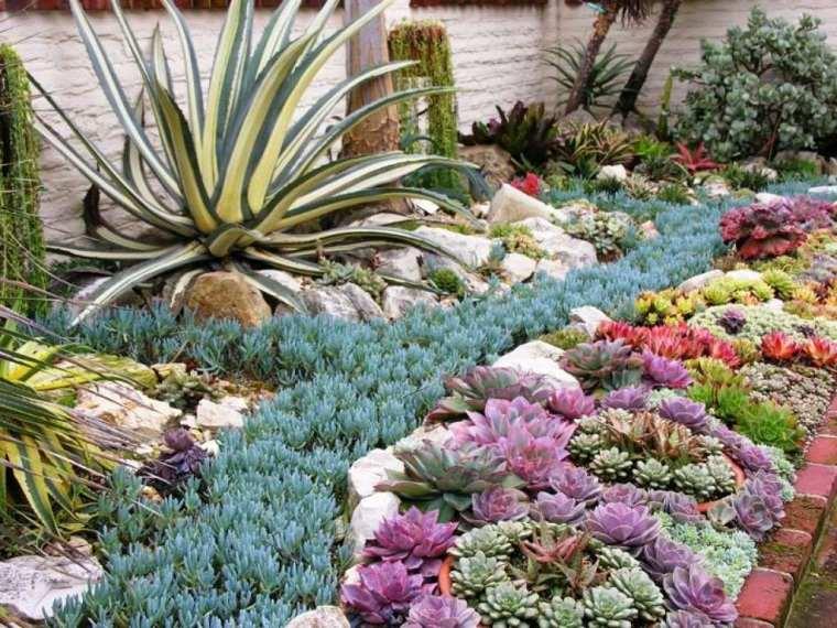 jardin-plantas-suculentas-exteriores-modernos-opciones-riego