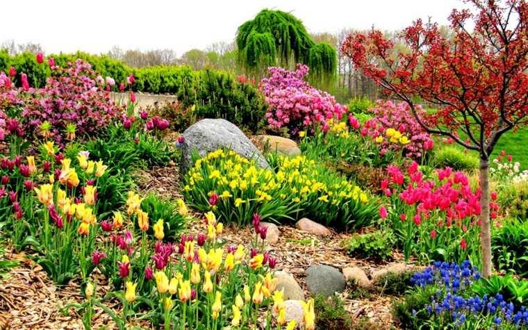 jardines con flores-bonitas-riego-plantas
