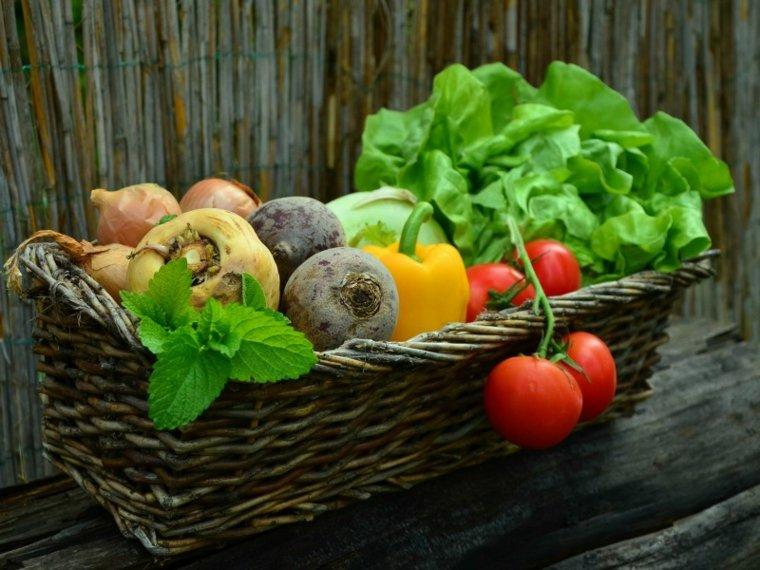 lista de verduras-criadas-plantadas-casa