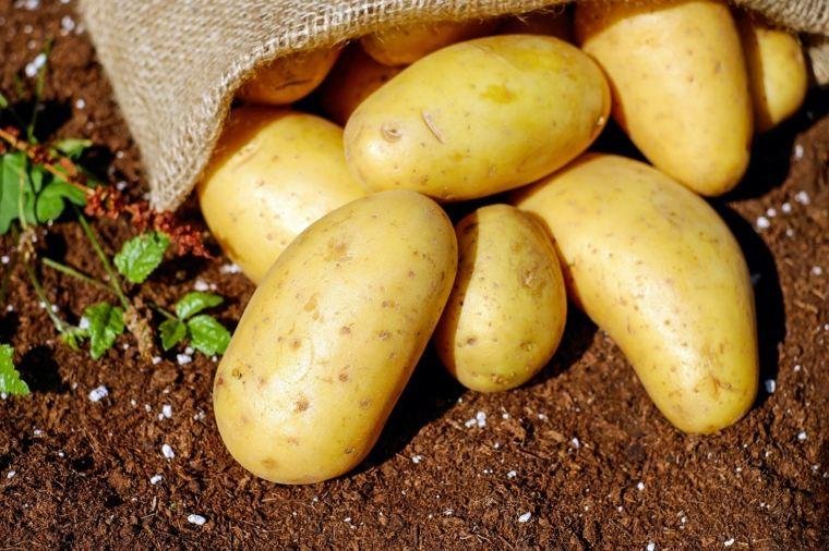 lista de verduras-criar-patatas