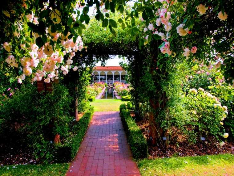 nutricion vegetal-mantenimiento-jardines