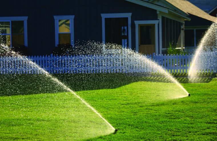 natural grass-errors-irrigation-lawn-fertilize it
