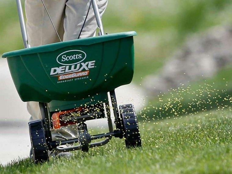 grass for garden-errors-chemical-fertilizers
