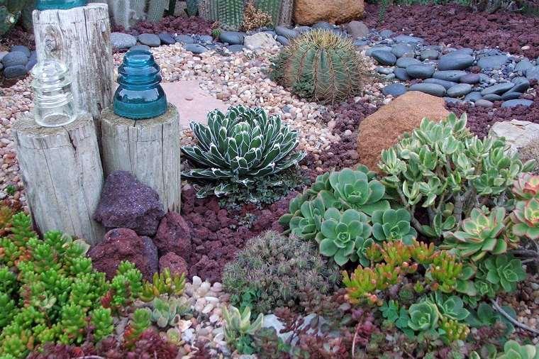 planta-jardin-suculentas-opciones-originales