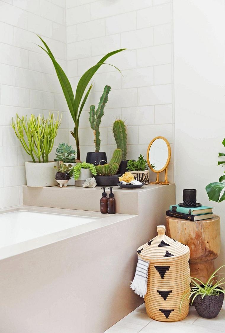 plantas suculentas-decorar-casa-opciones-bano