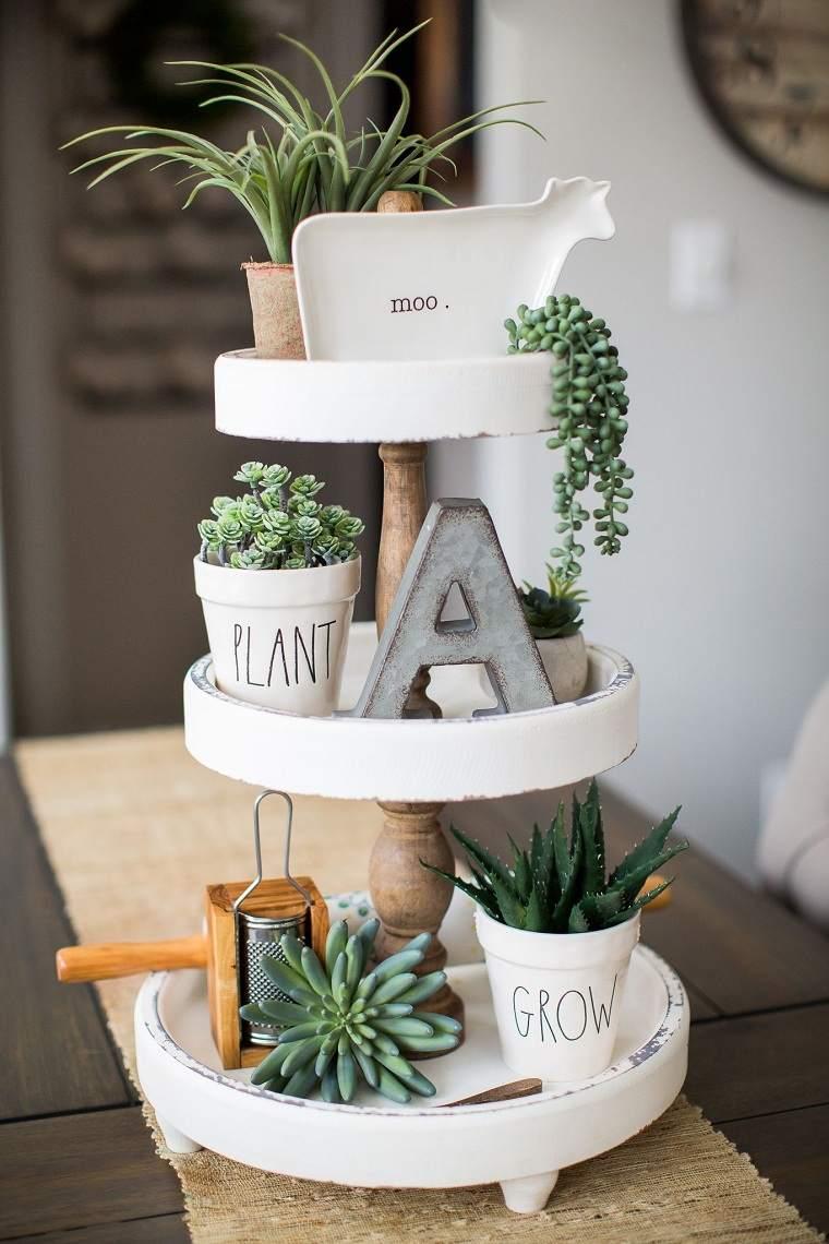 plantas-suculentas-decorar-casa