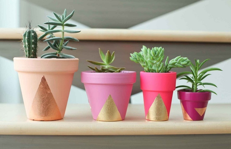 plantas-suculentas-riego-consejos-belleza-macetas-diy