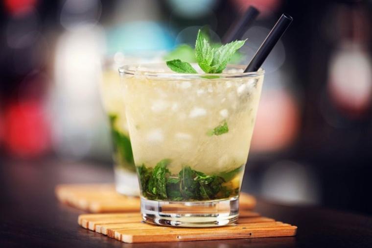 recetas de bebidas-verano-julepe-de-menta