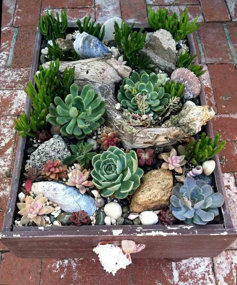 suculentas-exterior-macetas-opciones-decorar-jardin