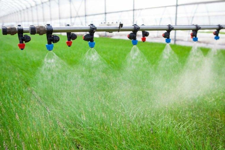 tecnicas de cultivo-plantas-aeroponicas
