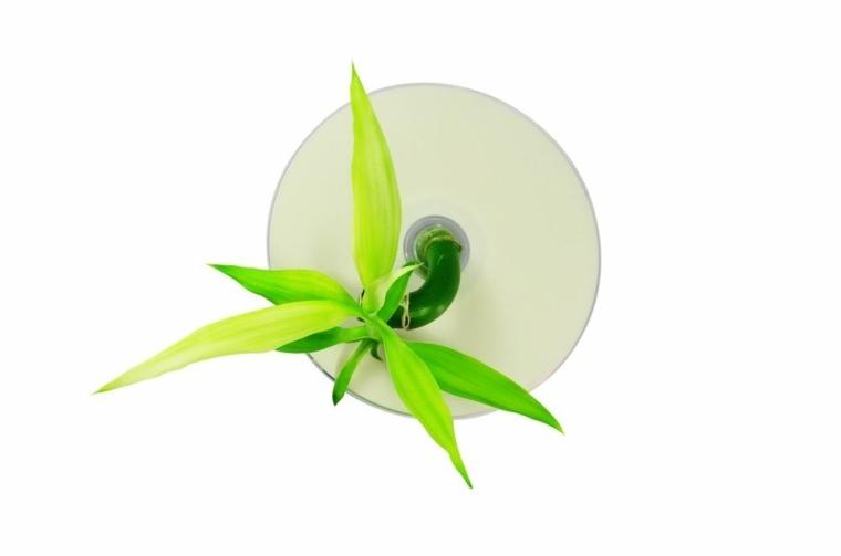 tipos de hidroponia-aeroponia-plantas