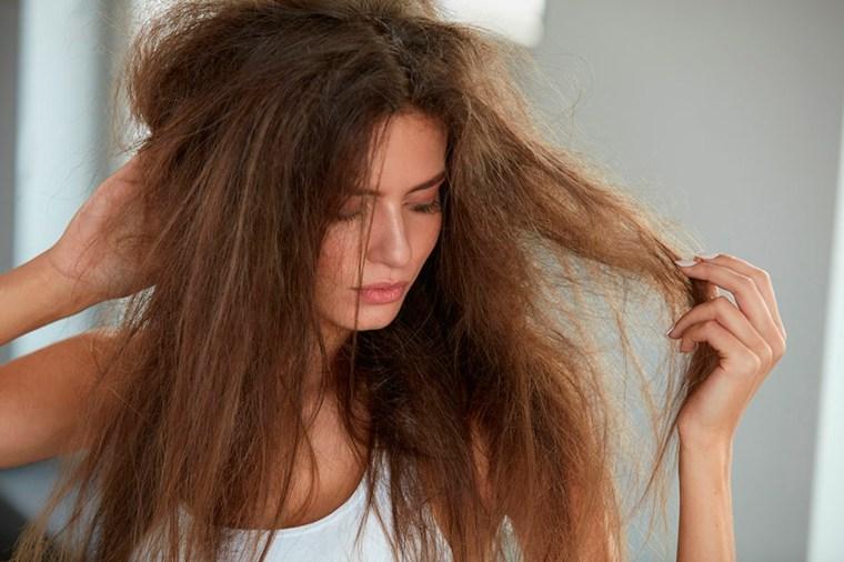 tipos de shampoo-caseros-pelo-danado