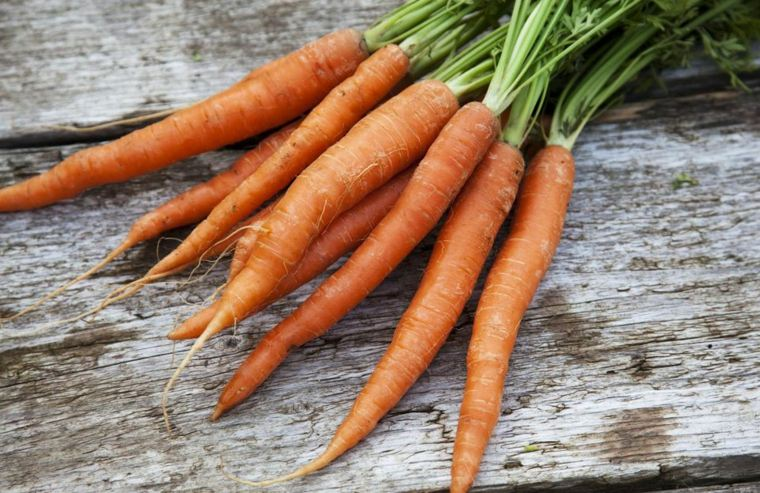 vitaminas de la zanahoria-criada-casa