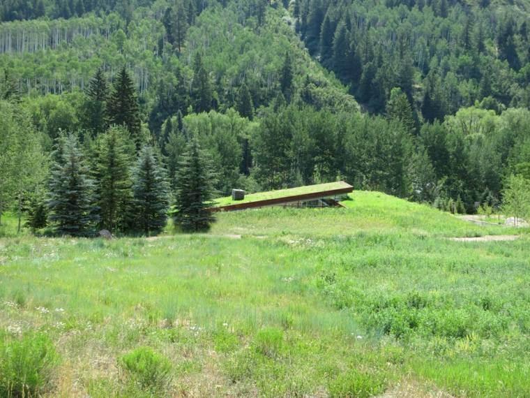 hierba-verde-casa-montana-Gluck-plus-diseno