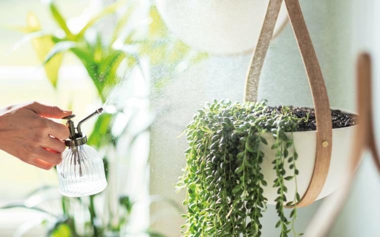 ideas-riego-decoracion-interiores