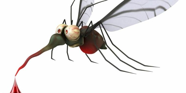 mosquitos razones-picaduras-prevenirlas