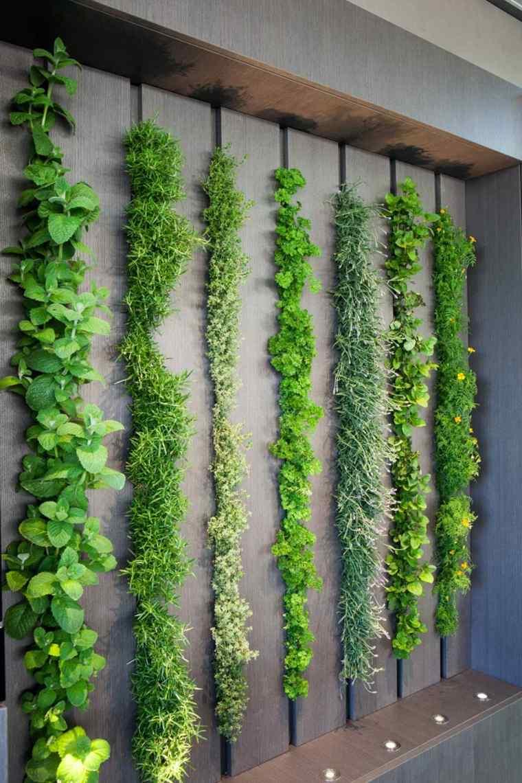 pared-de-plantas