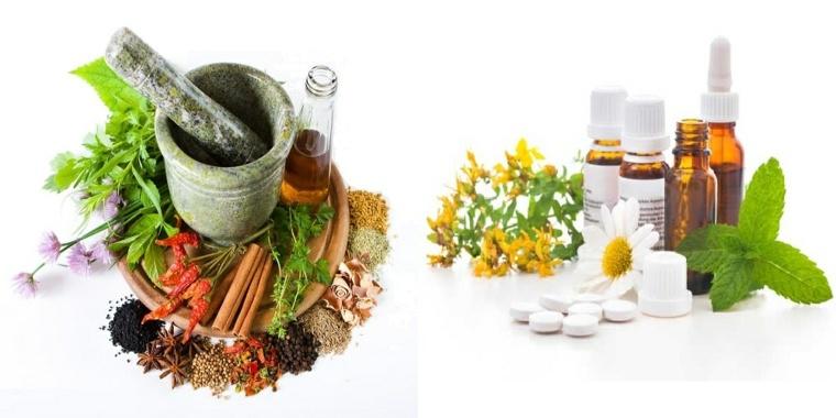 aceites-frescos-plantas-semillas
