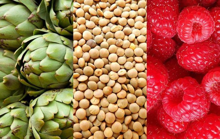 alimentos con fibra grupos