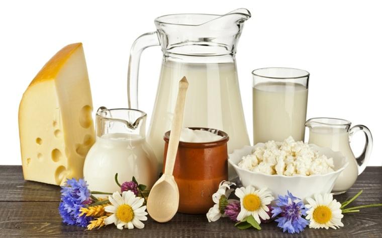alimentos no nutritivos-productos-lacteos