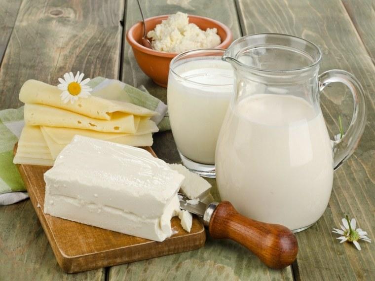 alimentos nutritivos-productos-lacteos