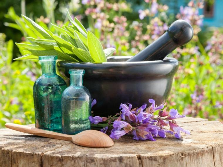 botellas-aceite-esenciales-plantas