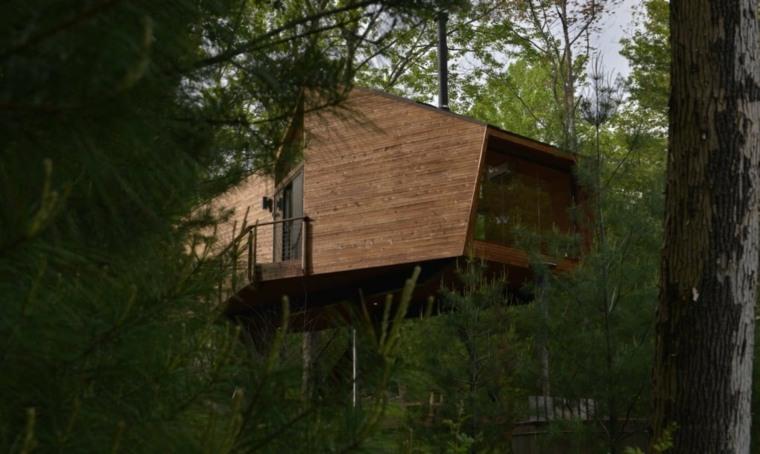 casa en arbol plantas pino