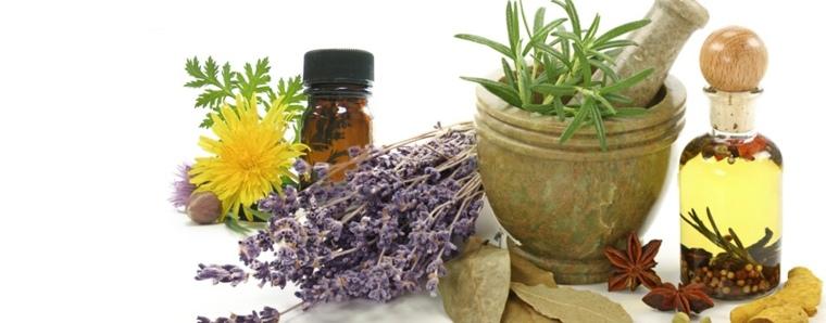 combinaciones-plantas-aceites-curativos