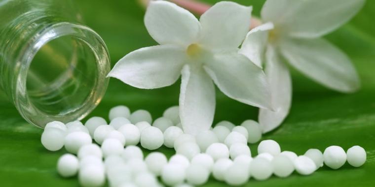diferentes-opciones-plantas-medicinales